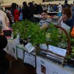 Spring Market 16